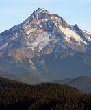 Mt Hood OR-2. Mt Hood & Mt Hood state forest as seen from Larch Mountain Oregon Royalty Free Stock Image