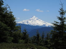 Mt. Hood. As seen from Table Mountain on Washington's side of the Columbia River Gorge royalty free stock image