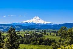 Mt.Hood fotografia stock