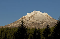 Mt Hood Stock Images