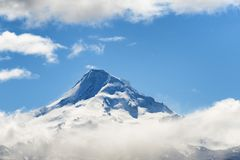 Mt. Hood above the clouds. Mt. Hood peak above a layer of clouds in Oregon Cascade Range Stock Images