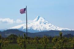 Mt Hood and american flag Stock Image
