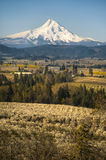 Mt Hood, apple orchards, Oregon Stock Photos
