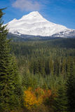 Mt. hood, autumn, Oregon Stock Photography