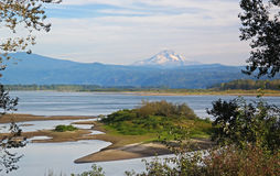Mt Hood With Columbia River Imágenes de archivo libres de regalías