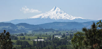 Mt Hood from a distance. Royalty Free Stock Image