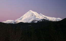 Mt. Hood at Dusk. Mt. Hood in Oregon, USA, at dusk, seen from the west side Royalty Free Stock Photo
