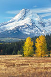 Mt Hood in fall from eastside Royalty Free Stock Photos