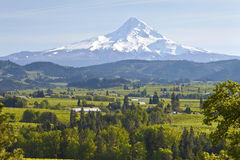 Mt. Hood and Hood River valley. stock photo