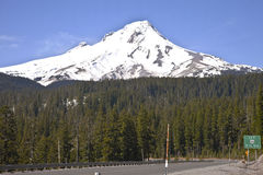Mt. Hood from Hwy. 26 Stock Image