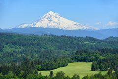 Mt. Hood from Jonsrud Point, Oregon Image 1. This viewpoint showcases a 180-degree view of Mt. Hood with a large meadow below it, the Sandy River 400 feet below Stock Image