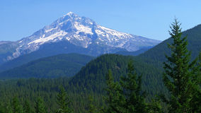 Mt. Hood in July Royalty Free Stock Images