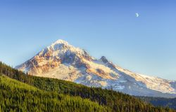 Mt Hood From Lolo Pass Mt Hood National Forest Foto de archivo