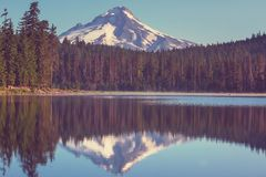 Mt.Hood Royalty Free Stock Photo