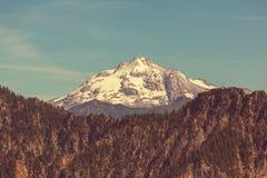 Mt.Hood Royalty Free Stock Photos