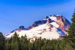Mt. Hood in Mt. Hood National Forest. Mt. Hood a volcano part of the Cascade Range sits above the timberline under blue skies in the late afternoon sunlight in Royalty Free Stock Photos