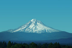 Mt. Hood, Oregon. Snow-capped Mt. Hood in July Stock Images
