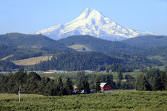 Mt. Hood Oregon. Stock Photography