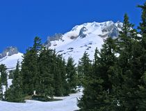 Mt. Hood, Oregon. Springtime view above Timberline Lodge Stock Photos