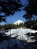 Mt. Hood, Oregon. Mt. Hood, as seen from Mirror Lake Trail in April Royalty Free Stock Photos