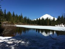 Mt. Hood, Oregon. Mt. Hood, as seen from Mirror Lake Trail in April, in Oregon Royalty Free Stock Image