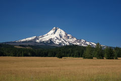 Mt. Hood A. Mt. Hood in the Oregon Cascade Mountains with a large field in the foreground Royalty Free Stock Photography