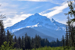 Mt Hood, Oregon. Mt Hood from the Ramona Trail system in Oregon Stock Photography