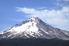A Mt. Hood portrait, NW Oregon. Royalty Free Stock Photo