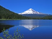 Mt. Hood reflection Royalty Free Stock Image