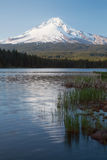 Mt Hood Reflection at Trillium Lake Stock Image