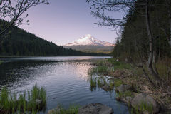 Mt Hood Reflection at Trillium Lake Stock Photos