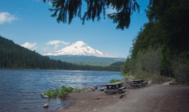 Mt Hood Reflection at Trillium Lake Royalty Free Stock Photos