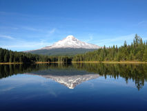 Mt. Hood Reflection in Trillium Lake Royalty Free Stock Images