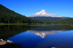 Mt. Hood Reflections Royalty Free Stock Photos