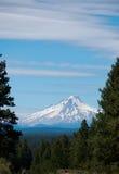 Mt Hood Rises im Abstand Lizenzfreies Stockbild