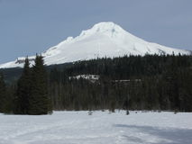 Mt Hood Snowcapped Peak Oregon USA Ski View Royalty Free Stock Photo