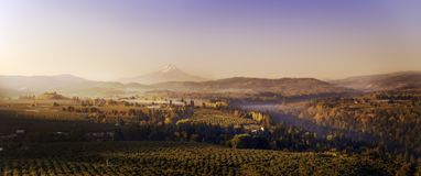 Wide aerial autumn sunrise panorama of the vineyards and orchards in the valleys below Mt Hood looking south towards the mountain stock images