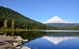 Mt Hood from Trillium Lake. Snow on Mt Hood is always beautiful, even more so when seen in a reflection on Trillium Lake Royalty Free Stock Photo