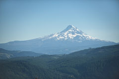 Mt. Hood under blue summer skies Royalty Free Stock Images