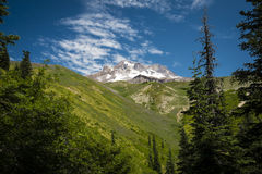Mt. hood under summer skies, Oregon Royalty Free Stock Image