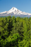 Mt. Hood Vertical Royalty Free Stock Images