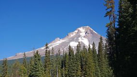Mt Hood Via Hwy 26 45 Miles East Of Portland Oregon. This is a beautiful vista of Mt Hood towards summer while traveling on Hwy 26 in Oregon Stock Images