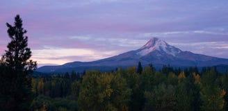 Mt Hood Volcanic Mountain Cascade Range Oregon territorium Fotografering för Bildbyråer