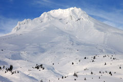 Mt. Hood in winter.-2 Royalty Free Stock Photography