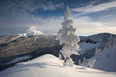 Mt Hood Winter Scene Stock Photo