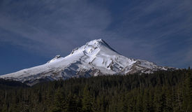 Mt Hood winter. Surrounded by the lush green forests of the Mt Hood National Forest, Mt Hood in the Oregon Cascades is covered in snow and year around glaciers Royalty Free Stock Images