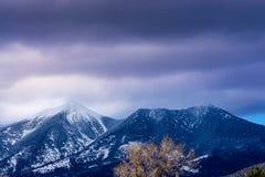 Mt. Humphreys, Flagstaff, Arizona royalty free stock photography
