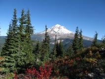 Mt. Huv Fotografering för Bildbyråer