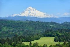 Mt Huv från Jonsrud punkt, Oregon bild 1 Fotografering för Bildbyråer