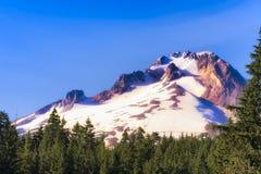 Mt Huv i Mt Hood National Forest Royaltyfria Foton